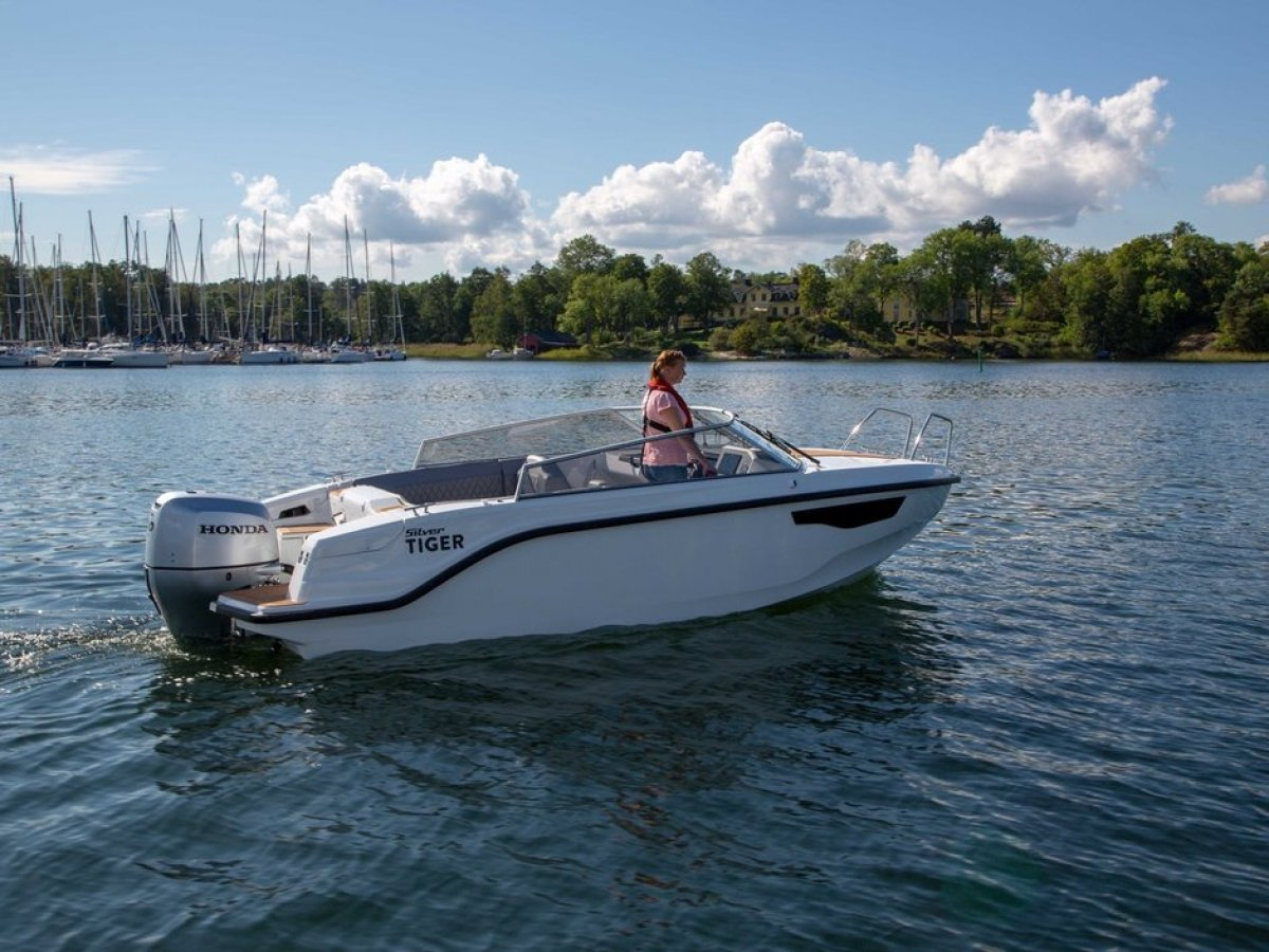 Silver Boats Tiger DCz