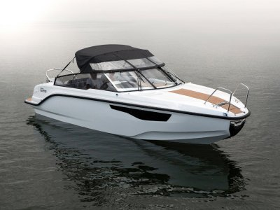 Silver Boats Raptor