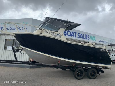 Dolphin Tournament 600 XL - Very Strong Clean Runabout