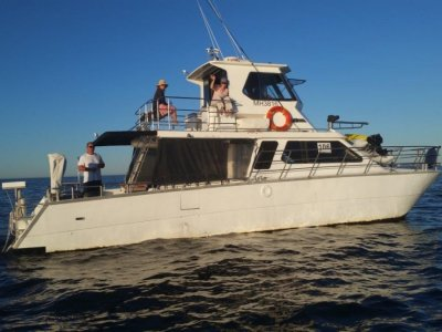 Mark Ellis Charter Catamaran
