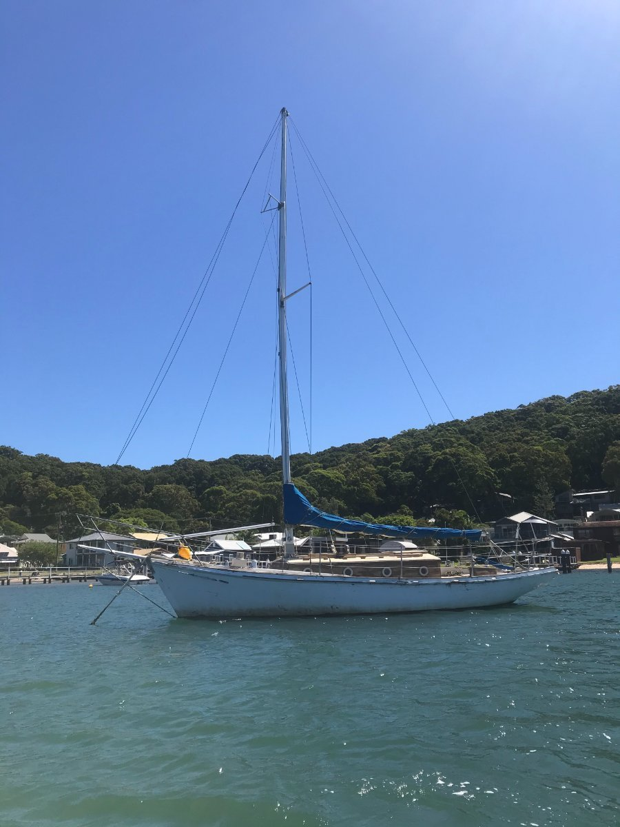 Herreshoff H28 HUON PINE on spotted gum frames project:Starboard quater