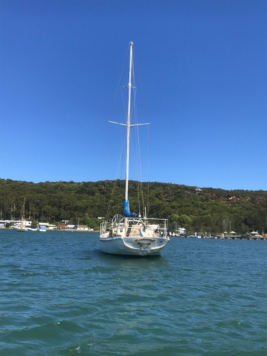 Herreshoff H28 HUON PINE on spotted gum frames project
