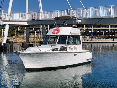 Freedom 28 Flybridge Cruiser