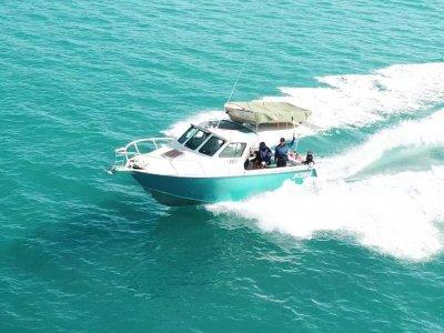 Jackman 8.0 Hardtop Plate Boat
