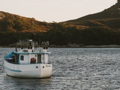 1988 Aft Wheelhouse Celery Pine Fishing Vessel