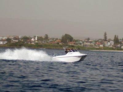 Shark Cat 5.7 Abcat