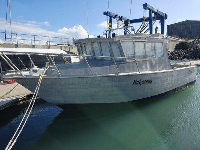 Sea Active 9.9 Cruiser 32ft Plate Alloy