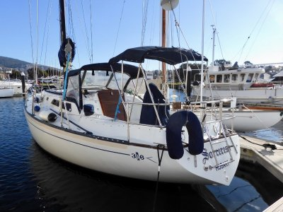 Islander 36 EXCEPTIONAL CONDITION AND PERFORMANCE!