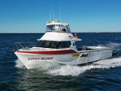 Marko 58 Fishing Vessel - New V12 Motor