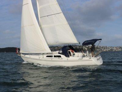 Northshore 38