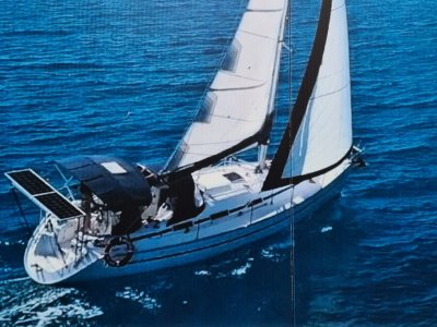 Airlie Beach Day Sailing for sale
