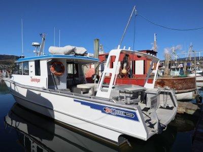 Seamaster 1400