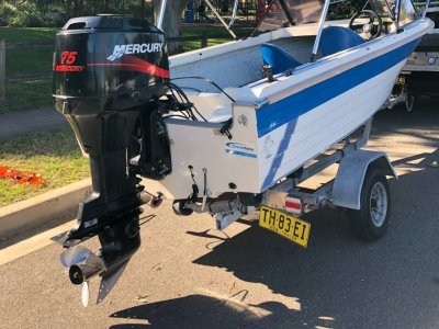 Sunchaser 440 Runabout