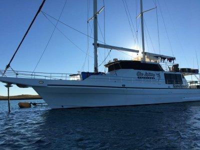 Freeman Motor Sailer Live-aboard Charter Vessel HUGE PRICE REDUCTION
