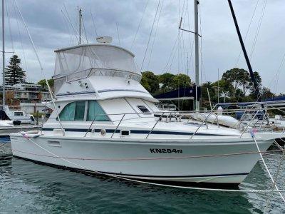 Caribbean 35 Flybridge Cruiser twin cabin