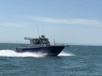 Custom built 7.8m Sports Fisher