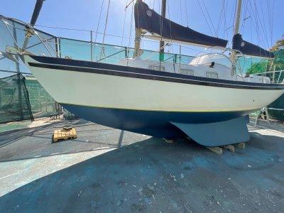 Seadog Motor Sailer
