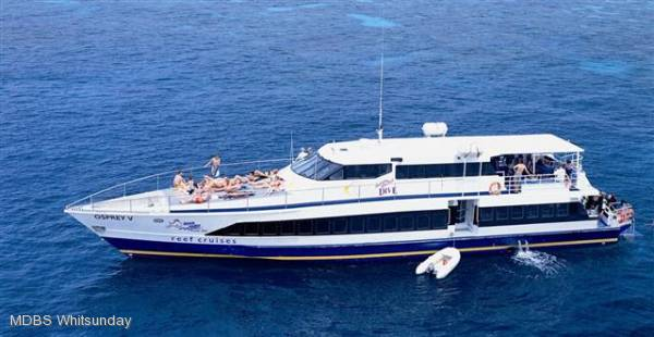 Aluminium Dive Charter Vessel/or Vessel and Busine