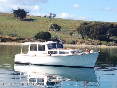 Tasmanian Timber Cruiser