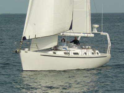 Ulf Rogeburg 45 (NOW REDUCED)- Click for more info...