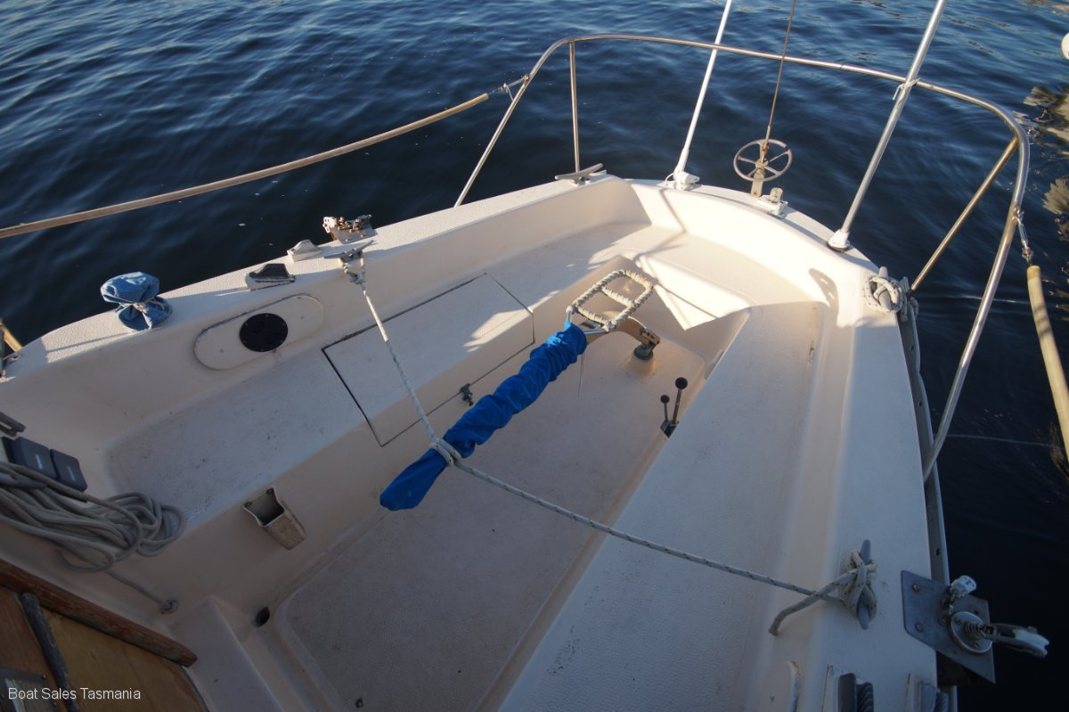 "Compass 29 ""Edris"""