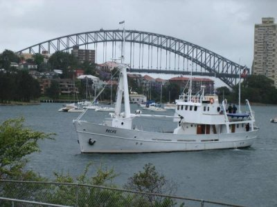 Custom Training Ship